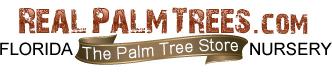 RealPalmTrees.com